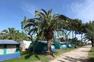 campings-ibiza-overzicht-kamperen-informatie